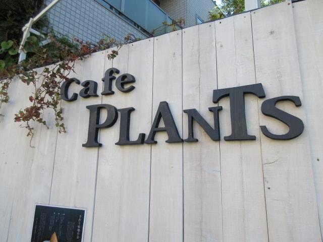 プランツ カフェ(Plants cafe)