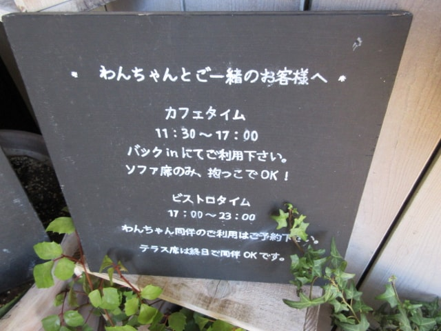 プランツ カフェ(Plants cafe